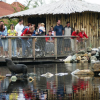 Aqua Zoo in Friesland